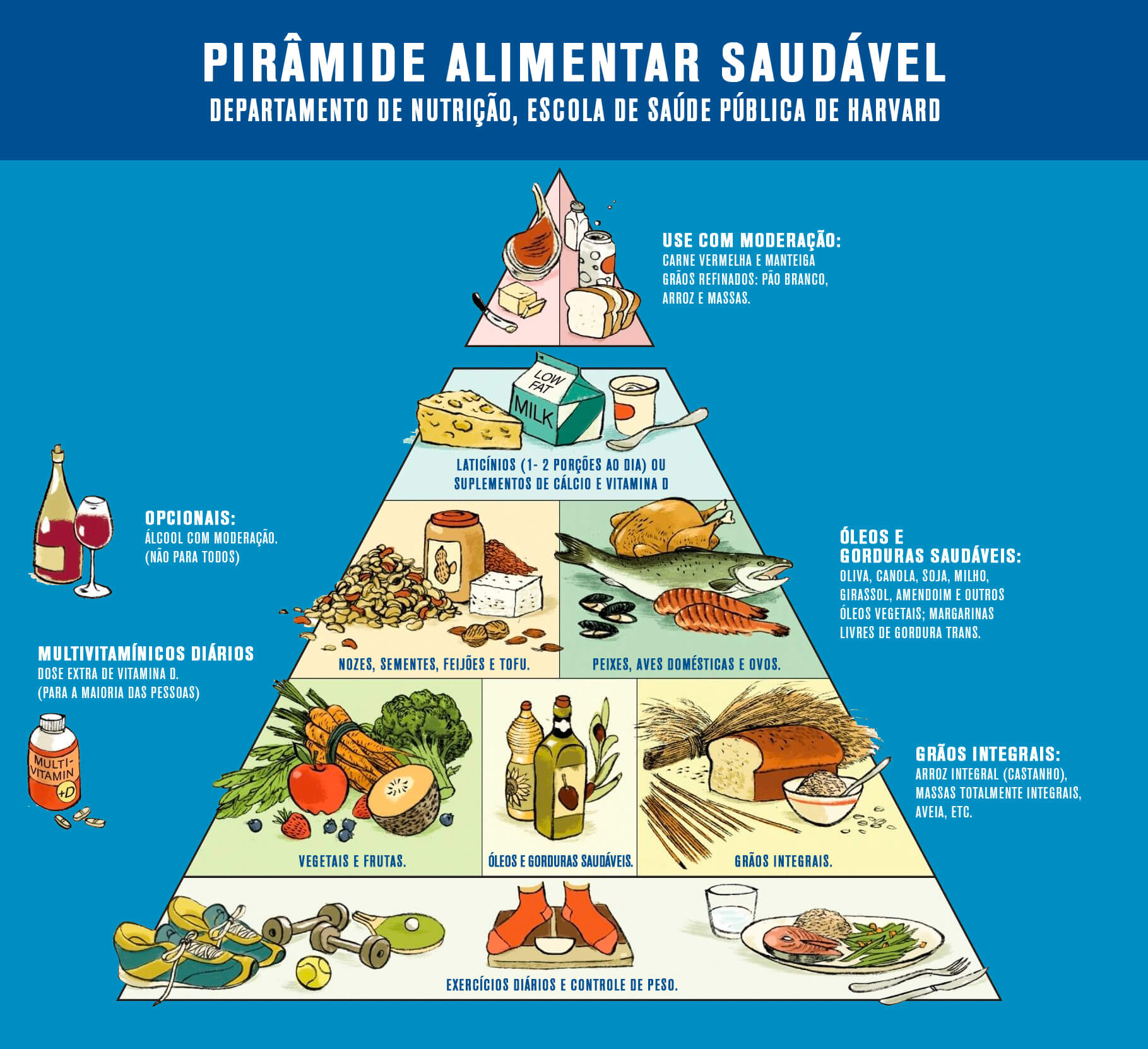 Como a pirâmide alimentar pode orientar sua dieta - Catarinense Pharma
